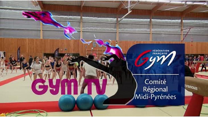 Gymnastique: le comité Midi-Pyrénées organisait le FESTI CLUBS LOISIR événement dédié à la Gym Pour Tous le 19 novembre .